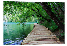 Acrylic print  Plitvice Lakes National Park Boardwalk - Renate Knapp