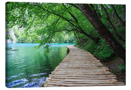 Renate Knapp Waldundwiesenfee - Plitvice Lakes National Park Boardwalk