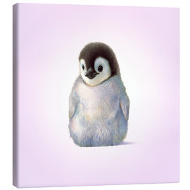 Canvas print  Penguin Chick - John Butler