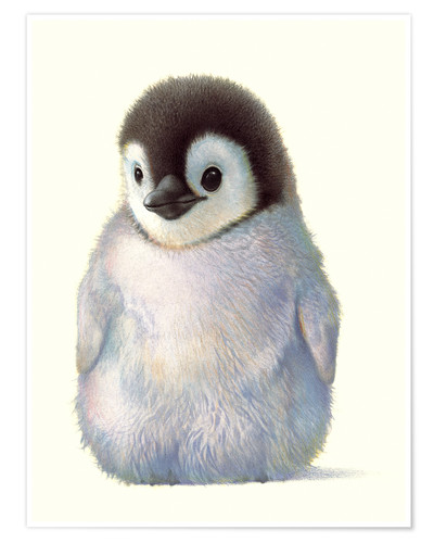 Penguin Chick Posters And Prints