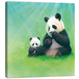 Canvas print  Panda, baby and bamboo - John Butler
