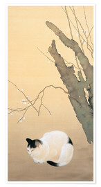 Premium poster  Cat and Plum Blossoms - Hishida Shunso