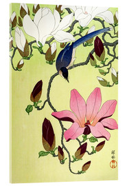 Acrylic glass  Magpie with Pink and White Magnolia Blossoms - Ohara Koson