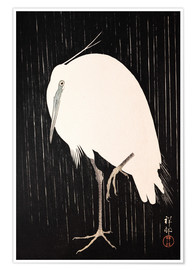 Premium poster  White Crane in the rain - Ohara Koson