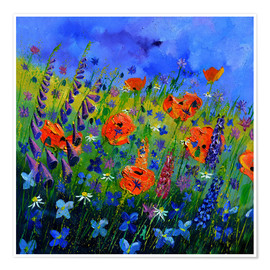 Premium poster Flower meadow