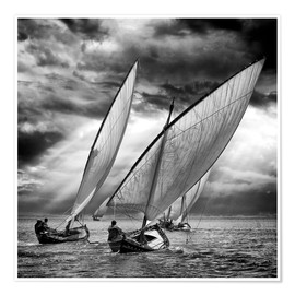 Premium poster Sailboats and light