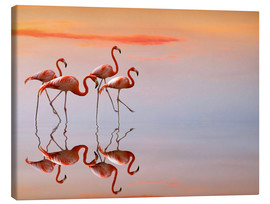 Anna Cseresnjes - Flamingos in the mirror