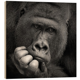 Wood print  thoughtful gorilla - Antje Wenner-Braun