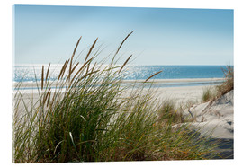Acrylic glass  Dune with fine marram grass - Reiner Würz RWFotoArt