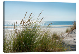 Canvas print  Dune with fine marram grass - Reiner Würz RWFotoArt