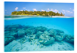 Acrylic print  Reef and tropical island, Maldives - Matteo Colombo