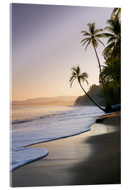 Acrylic print  Surf at a palm beach, Costa Rica - Matteo Colombo