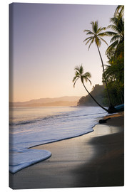 Canvas  Surf at a palm beach, Costa Rica - Matteo Colombo