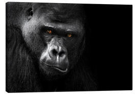 Canvas print  Gorilla face - WildlifePhotography