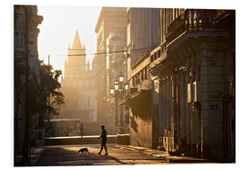 Foam board print  Road at dawn, Havana - Lee Frost