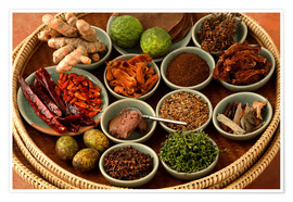 Premium poster Spices from the Thai cuisine