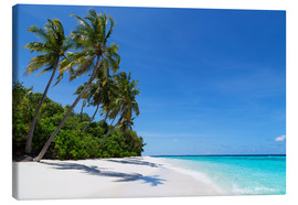 Canvas print  Deserted palm beach, Maldives - Martin Child