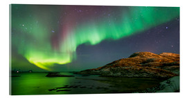 Acrylic print  Northern Lights near Tromso, Norway - Louise Murray