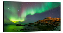 Aluminium print  Northern Lights near Tromso, Norway - Louise Murray