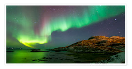 Premium poster  Northern Lights near Tromso, Norway - Louise Murray