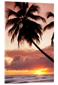 Acrylic glass  Tropical sunset, Bridgetown, Barbados, West Indies, Caribbean, Central America - Angelo Cavalli