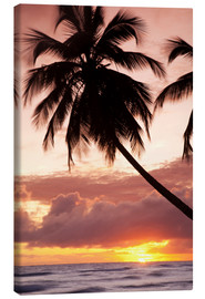 Canvas  Tropical sunset, Bridgetown, Barbados, West Indies, Caribbean, Central America - Angelo Cavalli