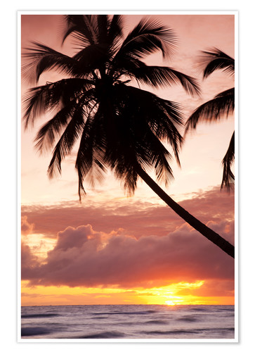 Poster Tropical sunset, Bridgetown, Barbados, West Indies, Caribbean, Central America