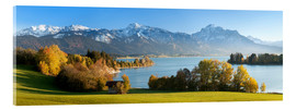 Acrylic print  Lake Forggensee and the Alps - Markus Lange
