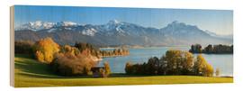 Wood print  Lake Forggensee and the Alps - Markus Lange