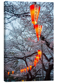 Canvas  Red lanterns illuminating the cherry blossom in the Ueno Park, Tokyo, Japan, Asia - Michael Runkel