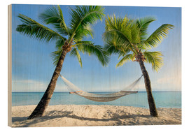Wood  Hammock at the beach in the south pacific - Jan Christopher Becke