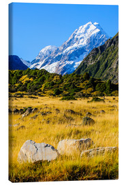 Canvas print  Mount Cook in New Zealand - Michael Runkel