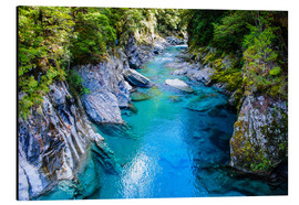 Aluminium print  The stunning Blue Pools, Haast Pass, South Island, New Zealand - Michael Runkel