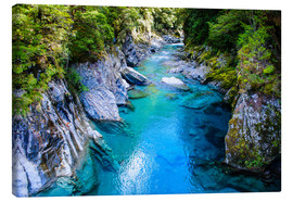 Canvas print  The stunning Blue Pools, Haast Pass, South Island, New Zealand - Michael Runkel