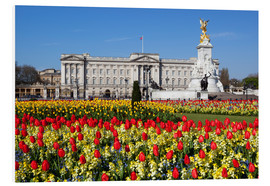 Foam board print  Buckingham Palace and Queen Victoria Monument with tulips, London, England, United Kingdom, Europe - Stuart Black