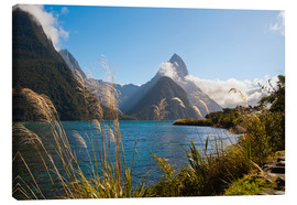 Canvas print  Mitre Peak, Milford Sound - Matthew Williams-Ellis
