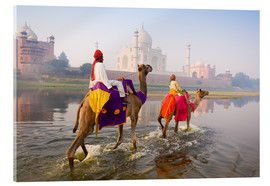 Acrylic print  Camel riders at the Taj Mahal - Gavin Hellier