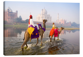 Canvas print  Camel riders at the Taj Mahal - Gavin Hellier