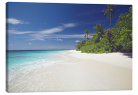 Canvas print  Tropical island, Maldives - Sakis Papadopoulos