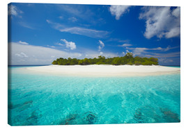 Canvas print  Uninhabited island, Maldives - Sakis Papadopoulos