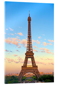 Acrylic glass  Eiffel Tower - Neil Farrin