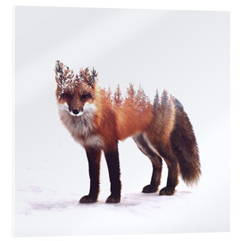 Acrylic glass  Fox - Peg Essert