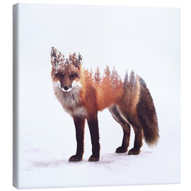 Canvas print  Fox - Peg Essert