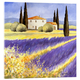Acrylic print  Light of Provence - Franz Heigl