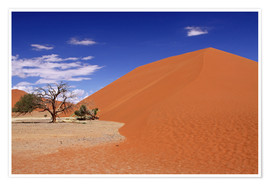 Premium poster Dunes of the Namib, Namibia