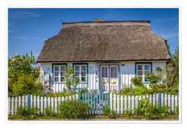 Premium poster  Thatched cottage on the Baltic Sea - Christian Müringer