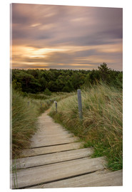 Acrylic print  Dune ridge on the North Sea - Dennis Stracke