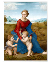 Poster Madonna in the meadow