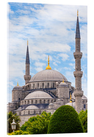 Acrylic print  Blue Mosque Istanbul - Jan Schuler