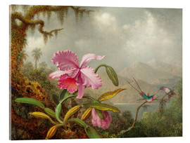Acrylic print  Cattleya Orchid and three Brazilian hummingbirds - Martin Johnson Heade